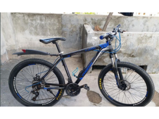 Phoenix bicycle 26""
